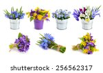 Stock photo spring flowers set isolated on white background 256562317