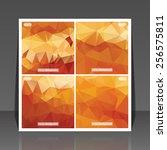 abstract vector flyer... | Shutterstock .eps vector #256575811
