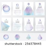 premium collection of brochure... | Shutterstock .eps vector #256578445
