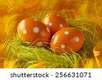 three orange easter eggs in the ... | Shutterstock . vector #256631071