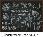 set of hand drawing flowers for ... | Shutterstock .eps vector #256733119