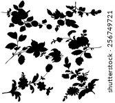 set silhouette black design... | Shutterstock . vector #256749721