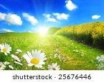 summer beauty | Shutterstock . vector #25676446