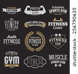 typographic fitness and gym... | Shutterstock .eps vector #256790635