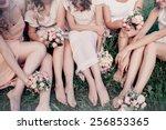 beautiful girls hen party | Shutterstock . vector #256853365