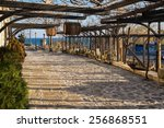 old town nessebar patio with... | Shutterstock . vector #256868551