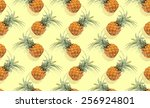 tropical background with... | Shutterstock . vector #256924801