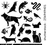 set of various pet icons. dog ... | Shutterstock .eps vector #256949401