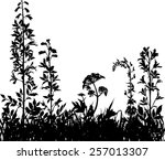 mountain meadow   Shutterstock .eps vector #257013307