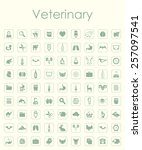 set of veterinary simple icons | Shutterstock .eps vector #257097541