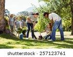 team of volunteers gardening... | Shutterstock . vector #257123761