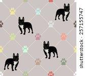 seamless cute pattern... | Shutterstock .eps vector #257155747