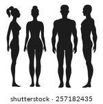 front and side view silhouettes ... | Shutterstock .eps vector #257182435