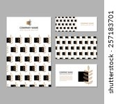 set of business card and... | Shutterstock .eps vector #257183701