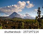 a seemingly endless field of... | Shutterstock . vector #257197114