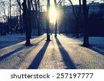 Bright Spring Sun Shining...