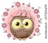 greeting card owl with flowers...   Shutterstock .eps vector #257201695