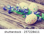 easter eggs with flowers  ...   Shutterstock . vector #257228611