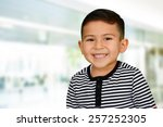young boy at school who is... | Shutterstock . vector #257252305