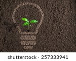 green plant growing in light... | Shutterstock . vector #257333941