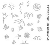 seamless floral spring doodle... | Shutterstock .eps vector #257336161