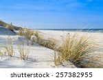 Grass Sand Dune Beach Sea View...