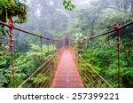 Bridge In Rainforest   Costa...