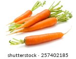 heap of  ripe carrots with... | Shutterstock . vector #257402185