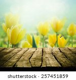 Easter Background With Tableto...