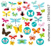 butterflies and ladybugs   Shutterstock .eps vector #257561017