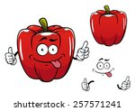 red glossy bell pepper... | Shutterstock .eps vector #257571241