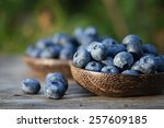 Blueberries In Garden