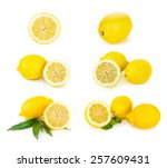 lemon citrus fruits on the... | Shutterstock . vector #257609431