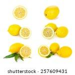 lemon citrus fruits on the... | Shutterstock . vector #257609431