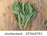 sage on wooden surface    Shutterstock . vector #257663791