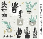 succulents in diy concrete pots ... | Shutterstock .eps vector #257667991