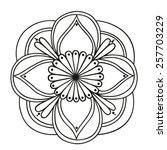 hand drawn round pattern... | Shutterstock .eps vector #257703229