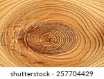 wood texture close up... | Shutterstock . vector #257704429