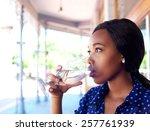 close up profile portrait of a... | Shutterstock . vector #257761939