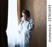 beautiful bride portrait... | Shutterstock . vector #257813059