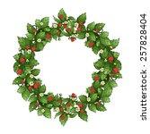 ripe strawberry wreath. vector... | Shutterstock .eps vector #257828404