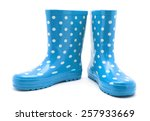 gumboots. isolated on white. | Shutterstock . vector #257933669
