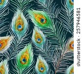 peacock feather  pattern ... | Shutterstock . vector #257946581