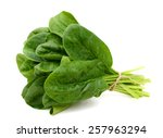 Fresh Spinach Isolated On White ...