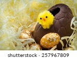 Easter Chick And Eggs In Nest