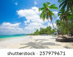 beach with coconut palm and sea | Shutterstock . vector #257979671
