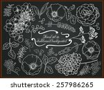 set of hand drawing flowers for ... | Shutterstock .eps vector #257986265