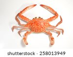Flower Crab Isolated On A Whit...