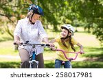 happy grandmother with her... | Shutterstock . vector #258017981