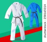 two kimono for judo | Shutterstock .eps vector #258165314
